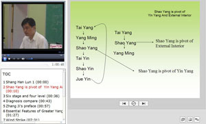 Shang han lun (Treatise on Febrile Diseases) video course screenshot